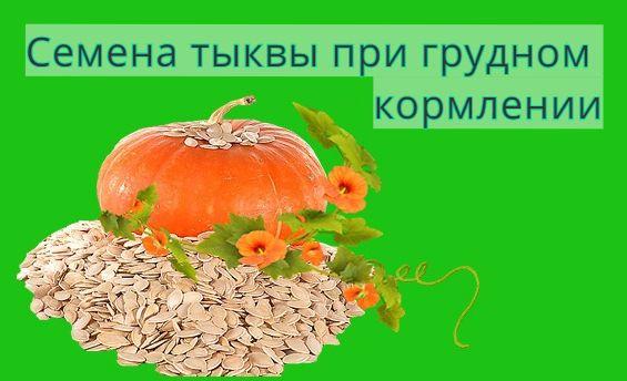 Семена тыквы при грудном кормлении