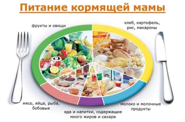 Какие продукты полезны для лактации
