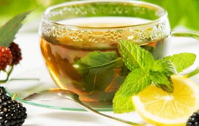 Зеленый чай с мелисой во время беременности