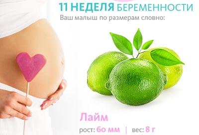 Параметры плода на 11 неделе