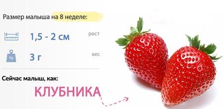 Размер плода на 8 неделе
