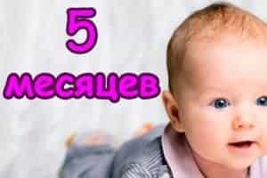 Режим дня пятимесячного ребенка