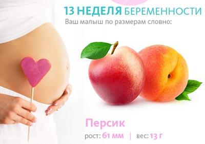 Размер плода на 13 неделе беременности