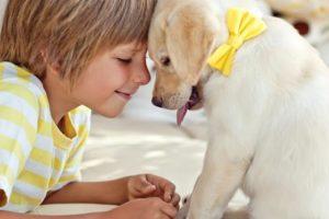 Ответственность малыша за домашнее животное