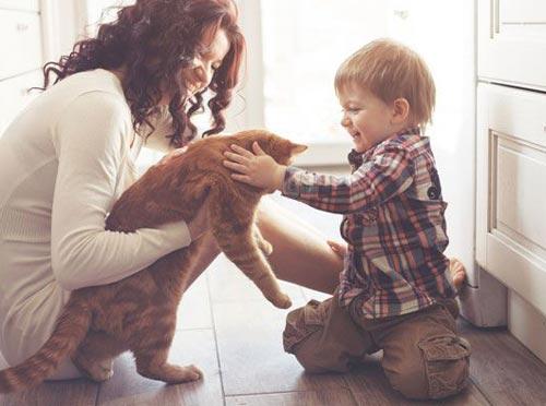 Выбор домашнего питомца вместе с ребенком