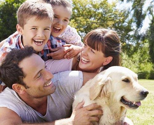 Семья и домашний питомец