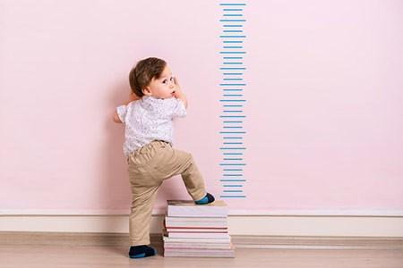 Физические параметры ребенка в 22 месяца